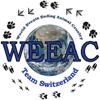 logo_weeac
