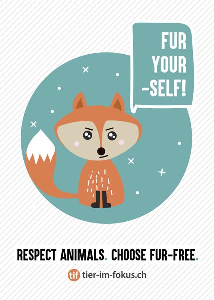 Tier Im Fokusch Hol Dir Jetzt Dein Set Gegen Pelz